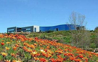 Iris Group Building